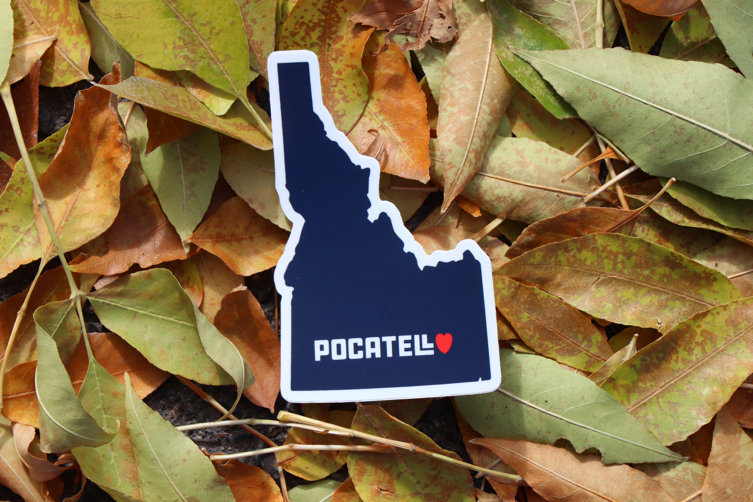 Pocatello State Sticker b.jpg