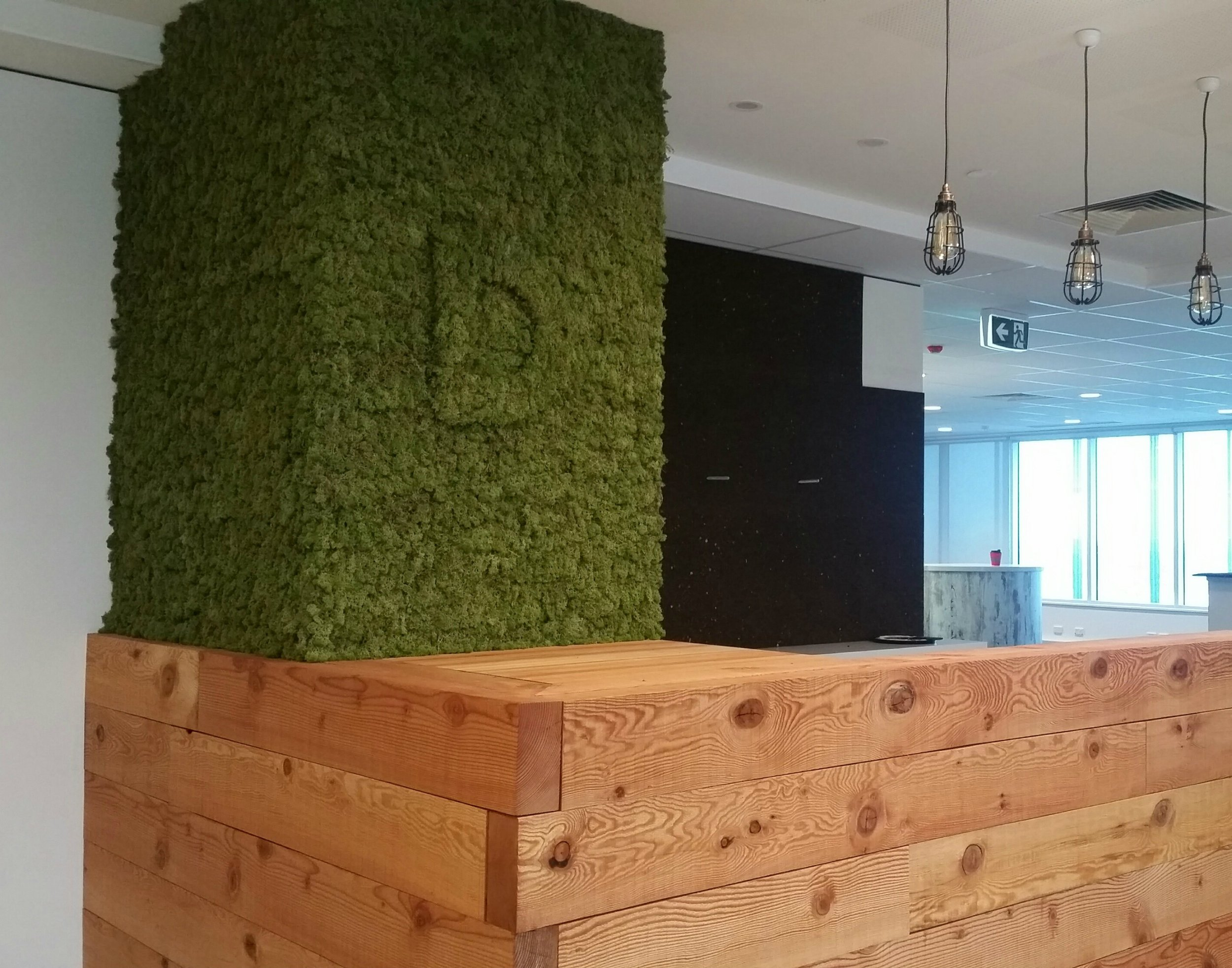 Moss Wall Project_Elite Constructions Discovery Parks.jpg