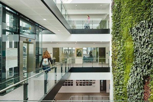 SMI National_Living Wall_David Attenborough Building 2.jpg