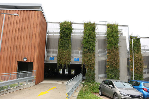 Granta_Park_Living Wall_UK_SMI National_ANS3.jpg