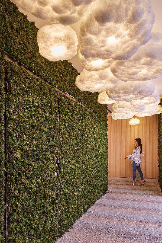 SMI National Moss Art_icare_Sydney.jpeg