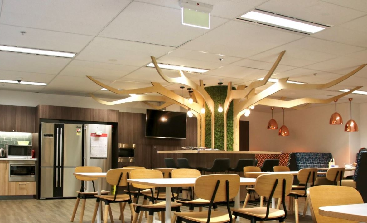 Tokio Marine Insurance - Sydney - Moss Art helps to purify air and absorb sound which makes it the perfect addition for this Staff Breakout area. The modern 'twist' on this Tree design brings nature into the space without need for any water or maintenance - smart!
