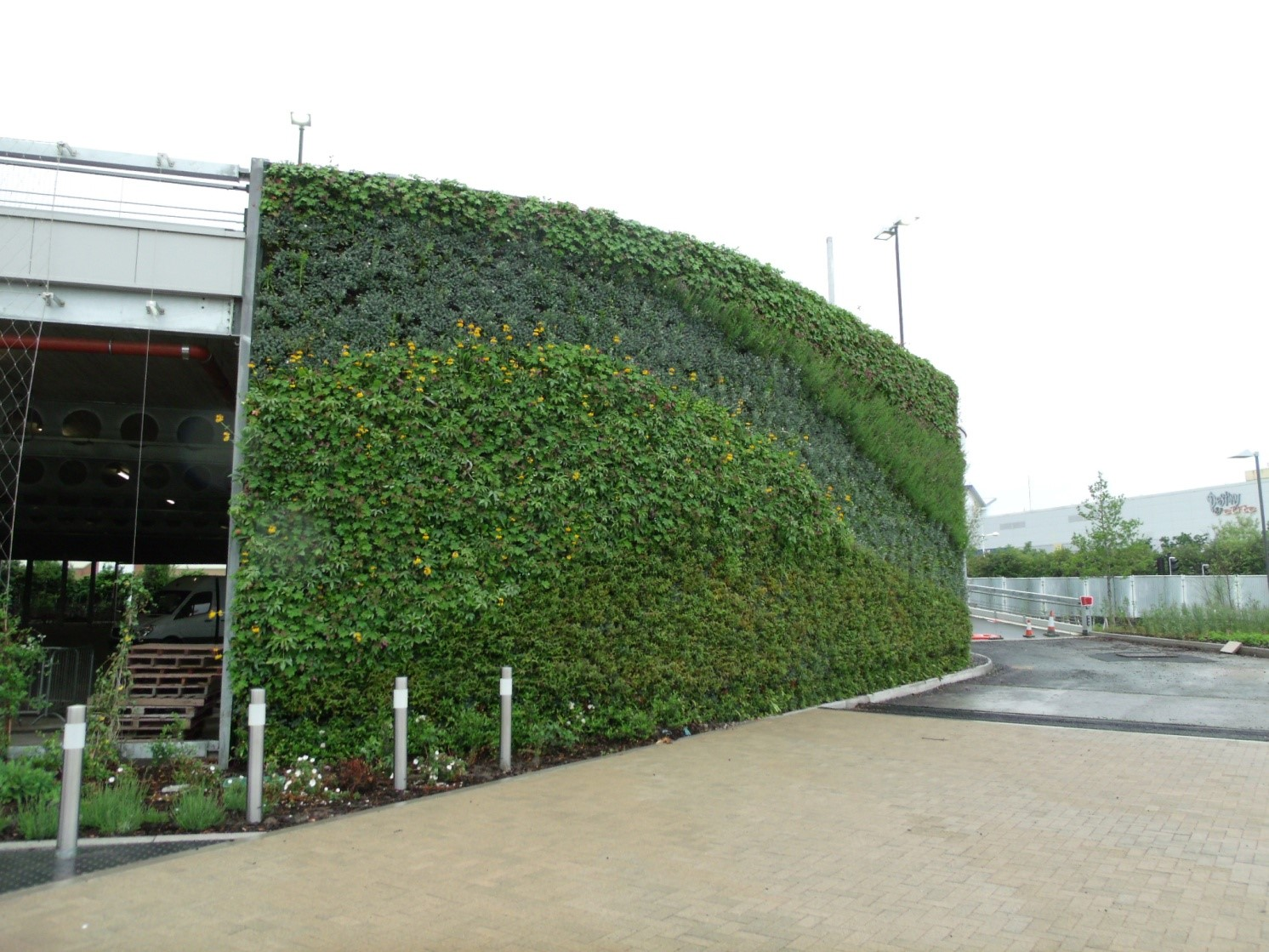 SMINational_Plant_wall_Project2.jpg