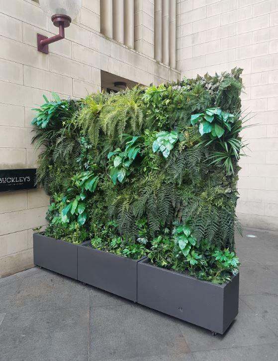 SMI National - Buckleys - Artificial Plants Outside - reduced.JPG