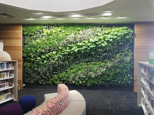 Clonard College Living Wall.jpg