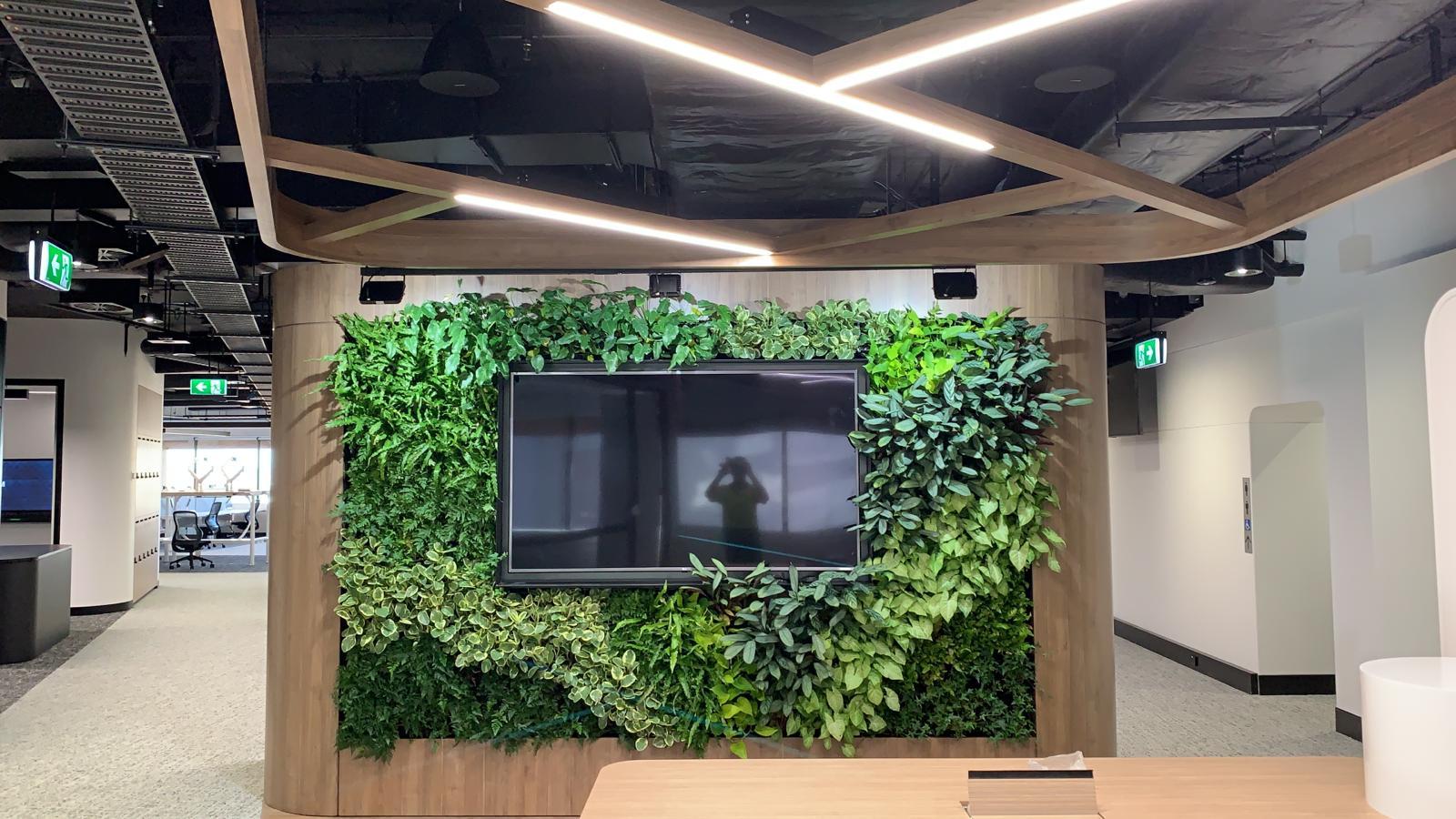 Ausgrid Living Wall.jpg