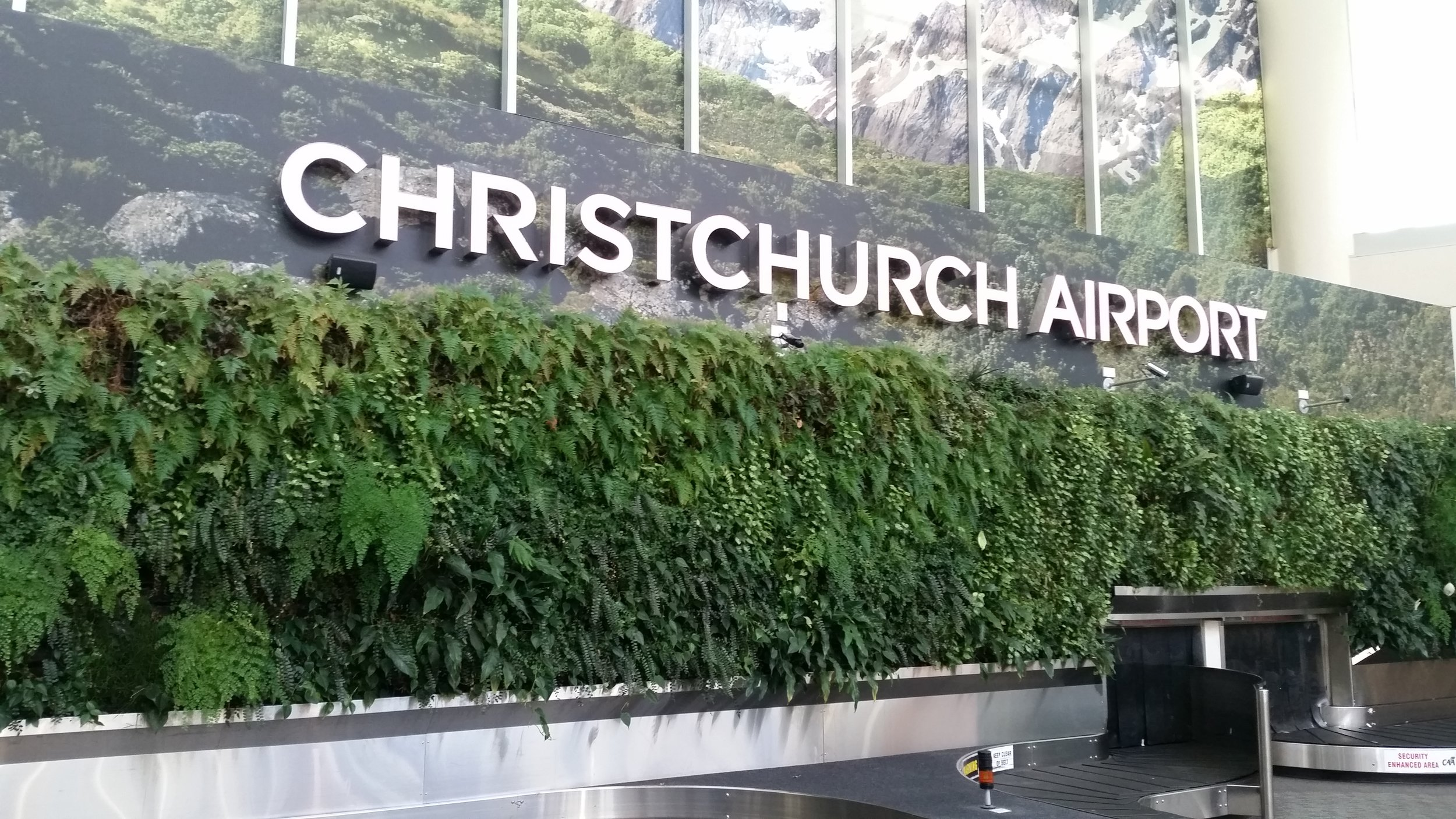 SMI National_Living Wall_Christchurch Airport NZ_ANS Global module_Oasis Landscaping.jpg