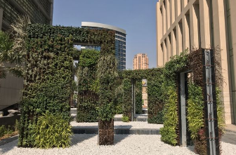 Living Wall - Doha 1.PNG