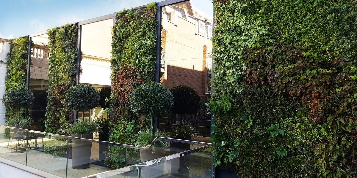SMI National_Living Wall_Charles Street_web.jpg