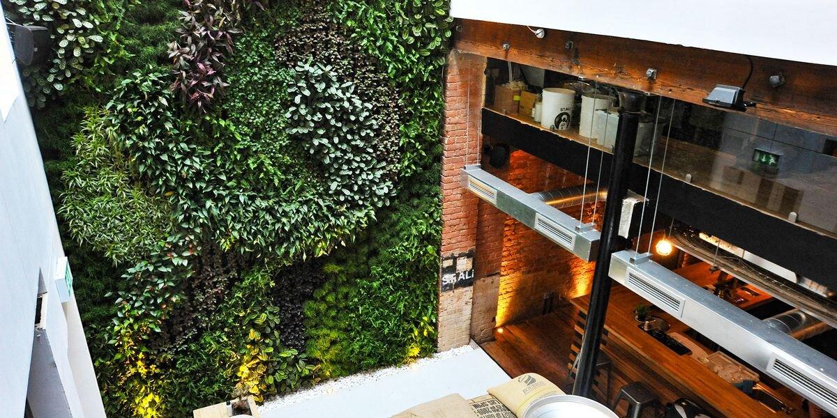 SMI National_Living Wall_Clerkenwell_Cafe_main.jpg