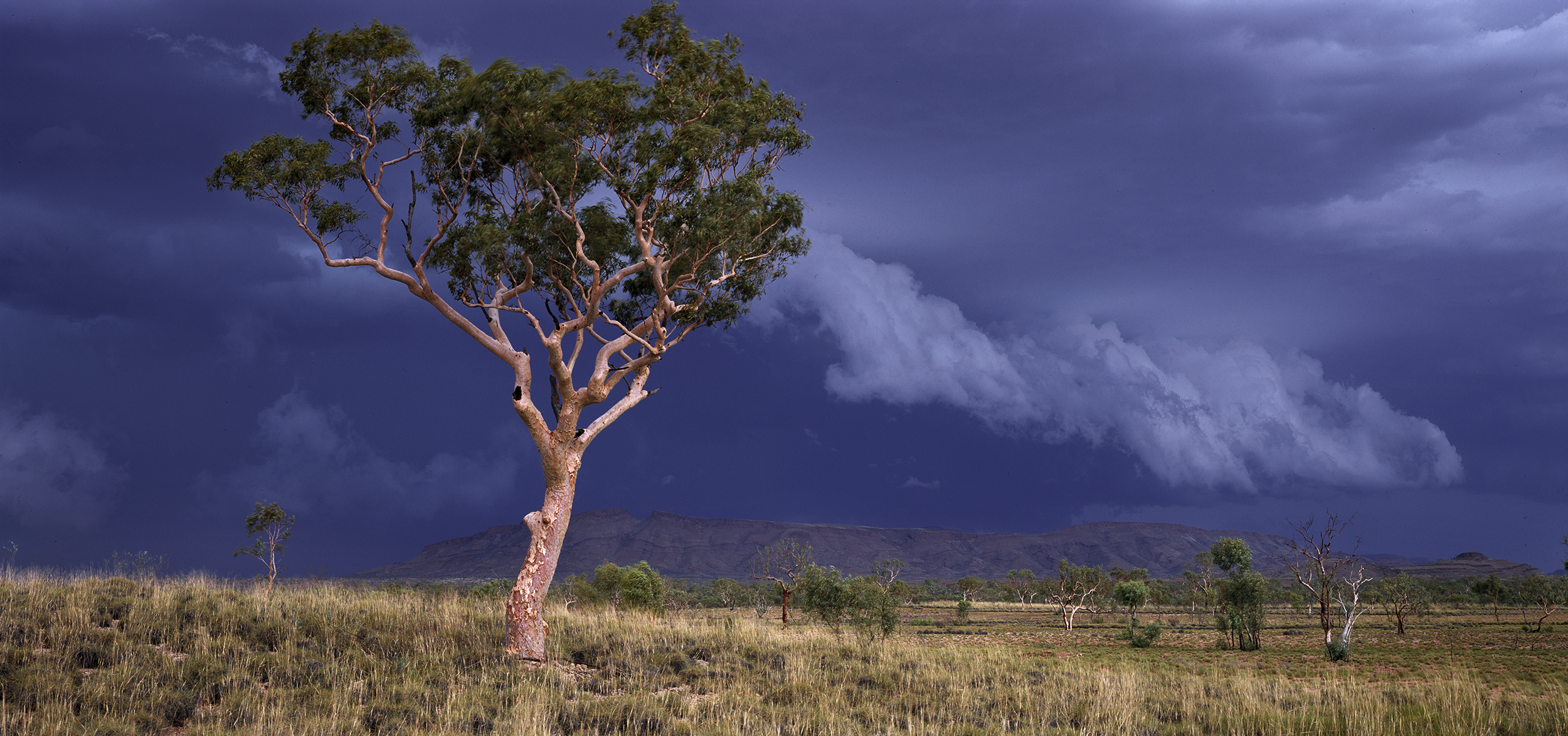 Summer Storm Squall, Near Mt Farquhar, Hamersley Range, Western Australia, 2015.  Edition of 3.