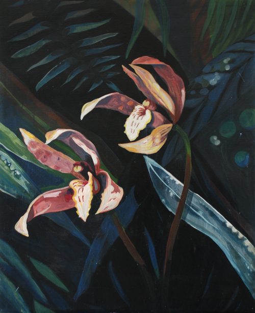 Orchid III // 2012