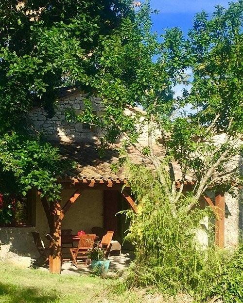Olive Grove 22.32.49.jpg