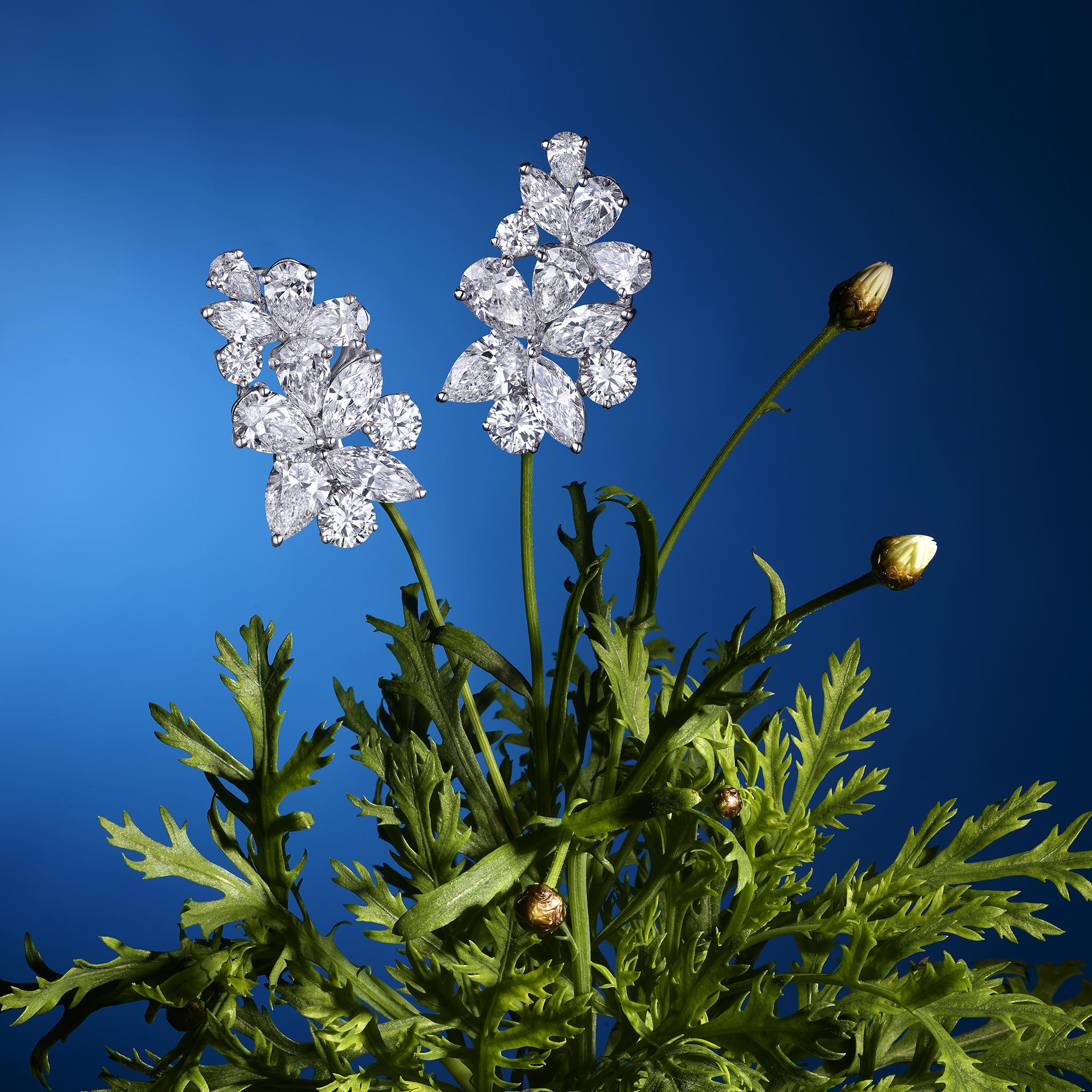 Flower Graff V3.jpg