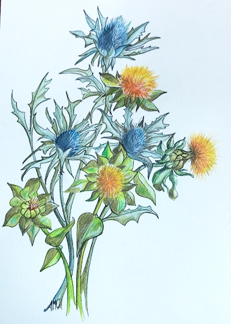 Alison craddock website - thistles.jpg