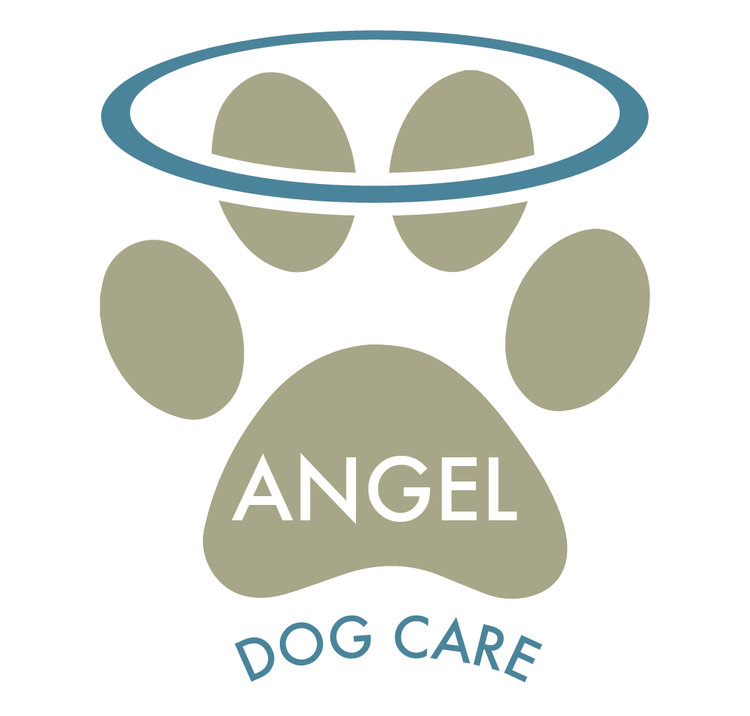 Angel Dog Care Design and Branding
