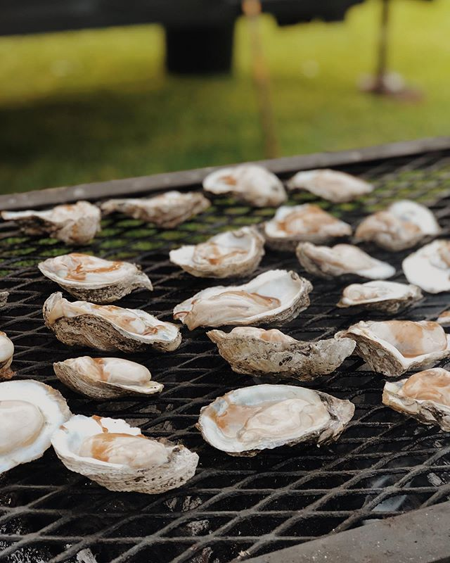 Grilled oysters for Memorial Day.