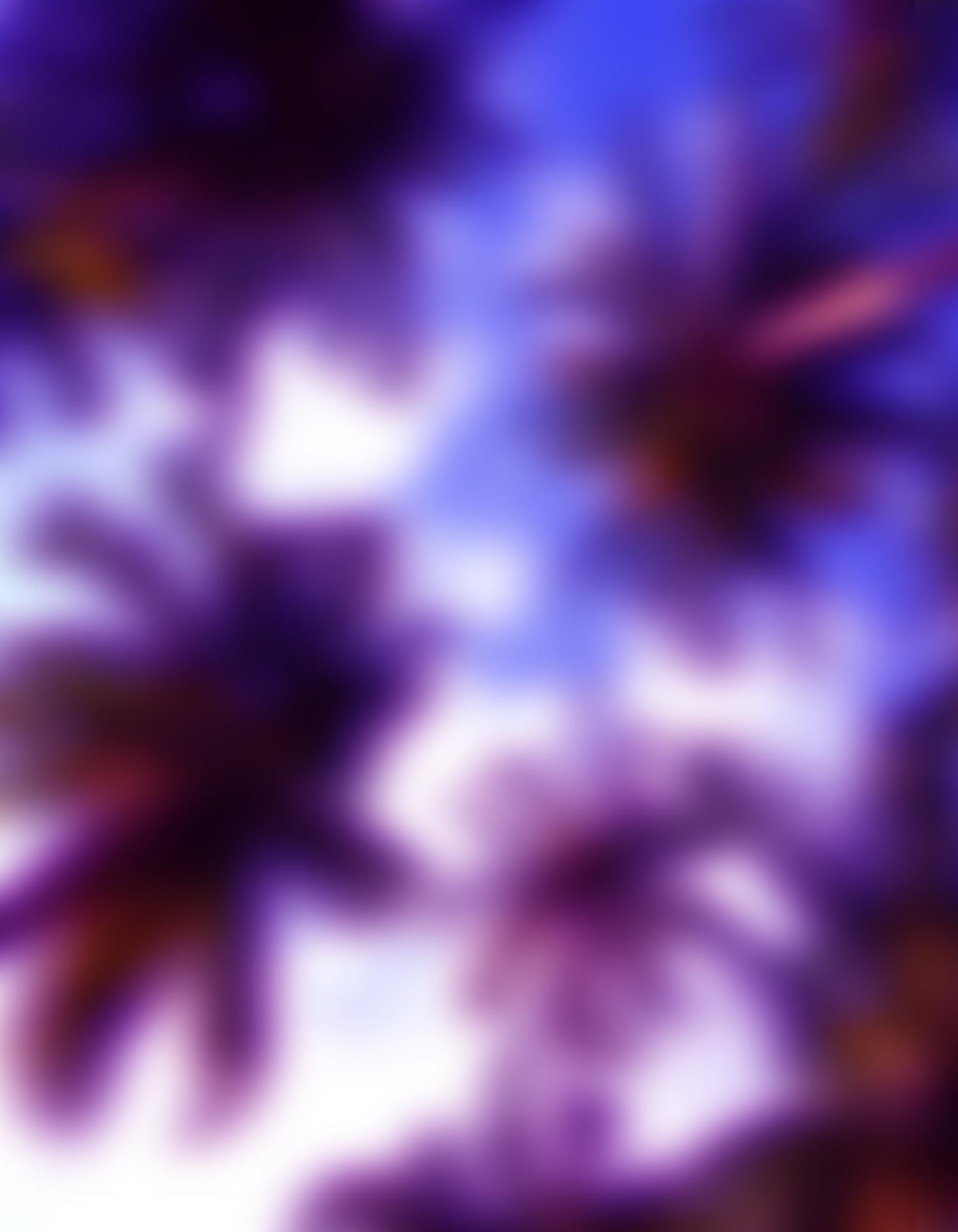 Ry David Bradley    Skyward 1  Dye transfer on synthetic velvet 62 x 48 in (157.5 x 121.9 cm)