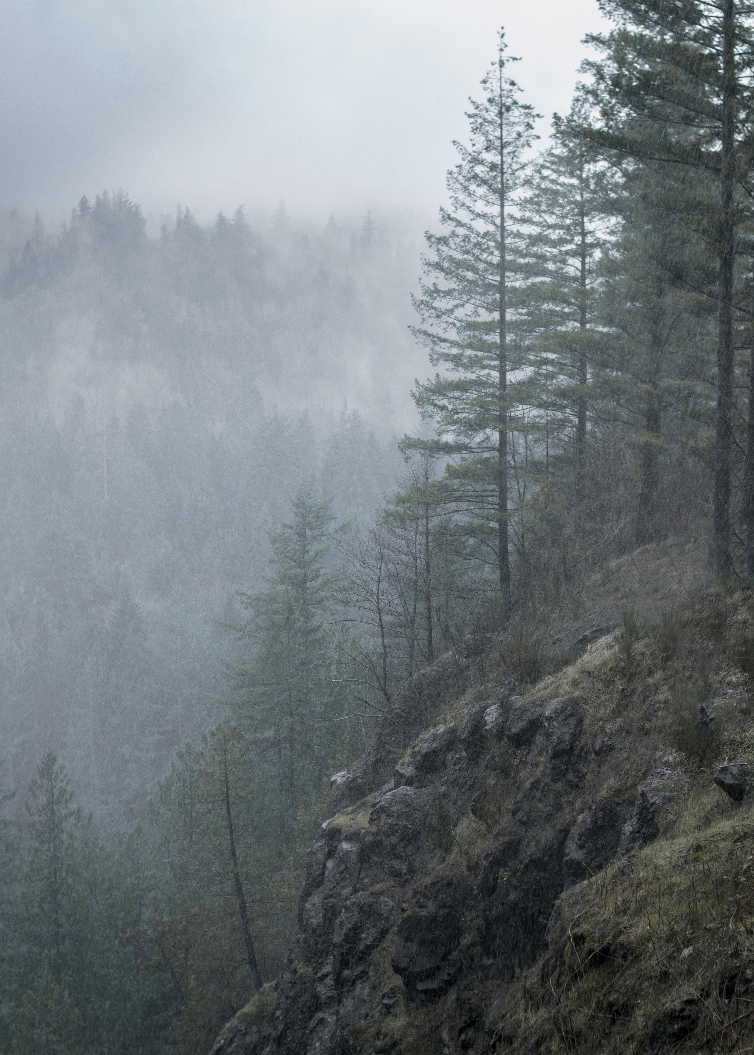 Snoqualmie Falls.jpg