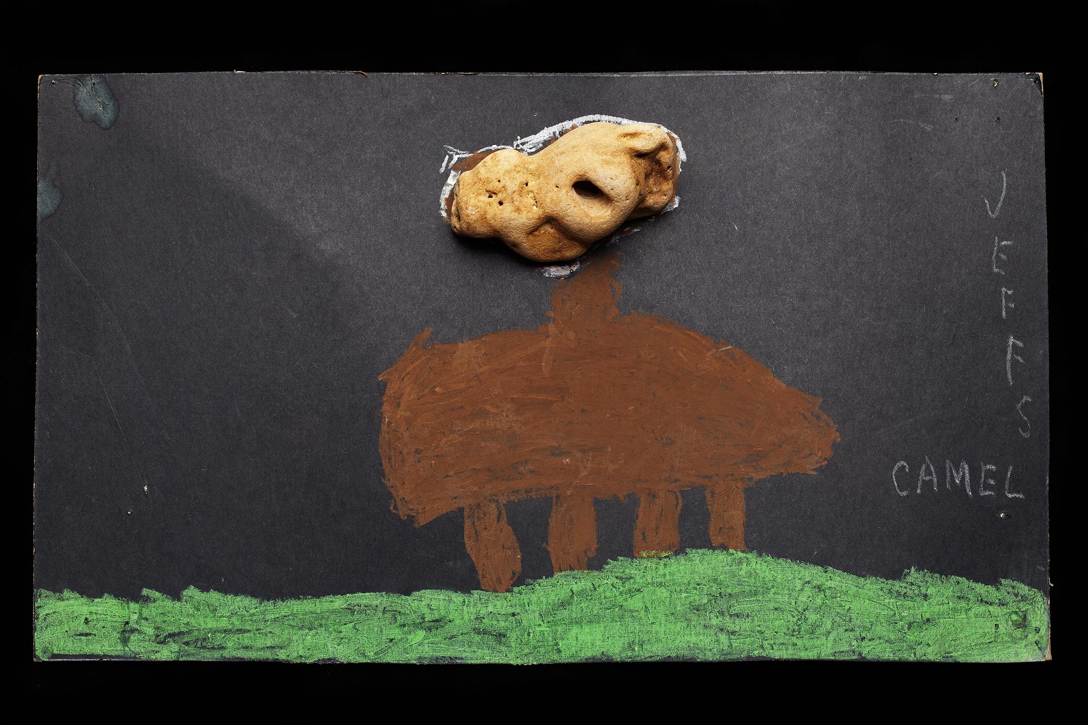 ShellArt- Camel by Cousin Jeff