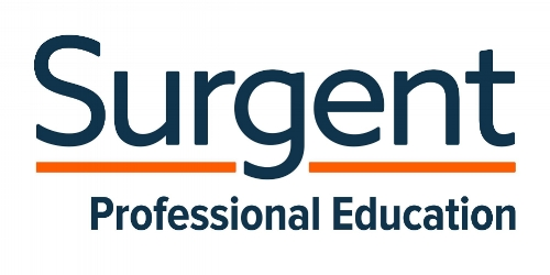 This was Surgent's pre-existing logotype.