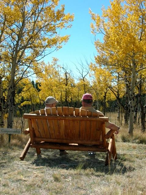 bench-men.jpeg