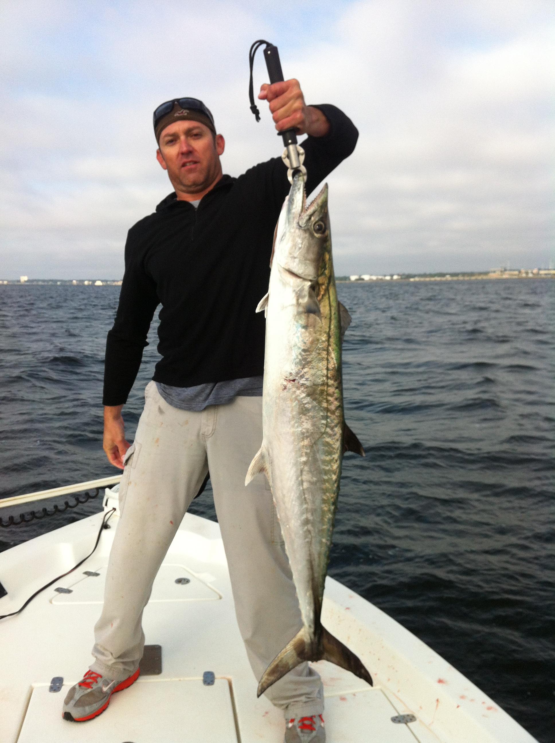 King Mackerel In Pensacola Bay!