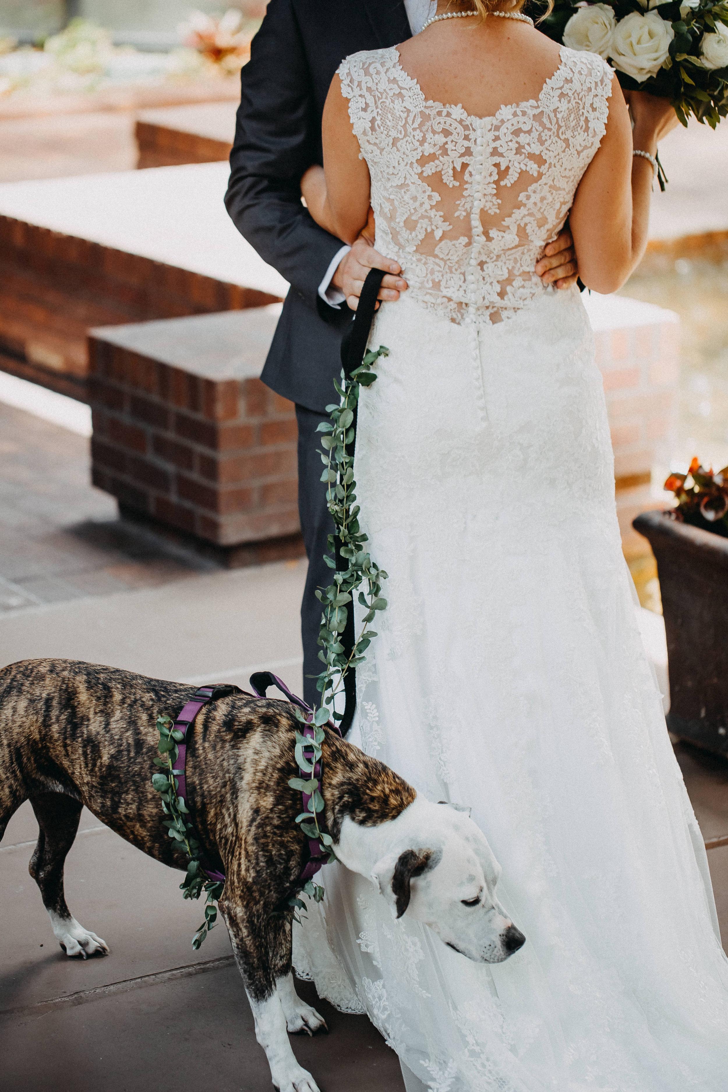 McGinnis Wedding 2017 (JPEG) (240 of 992).jpg