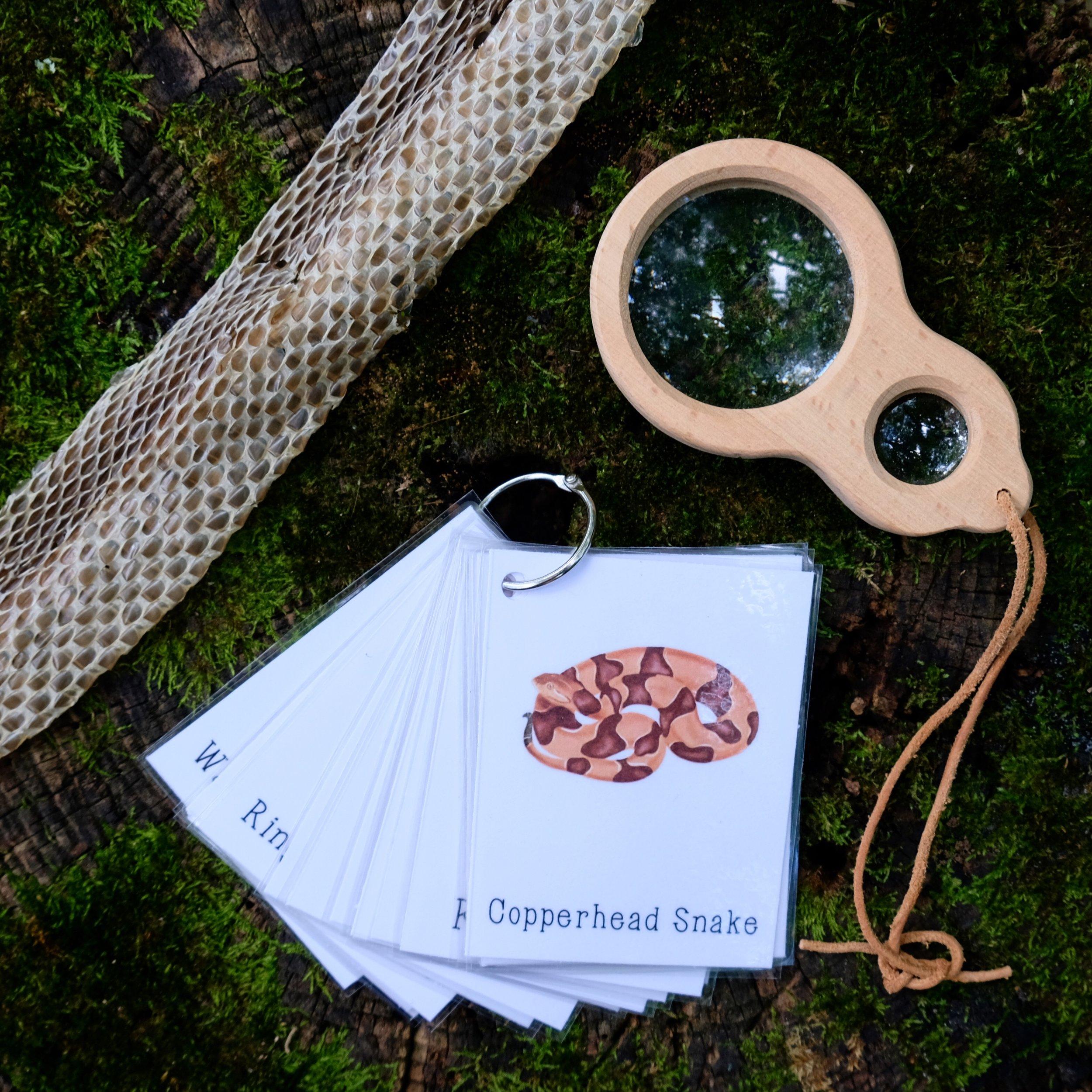 Snake Mini Field Guide.JPG