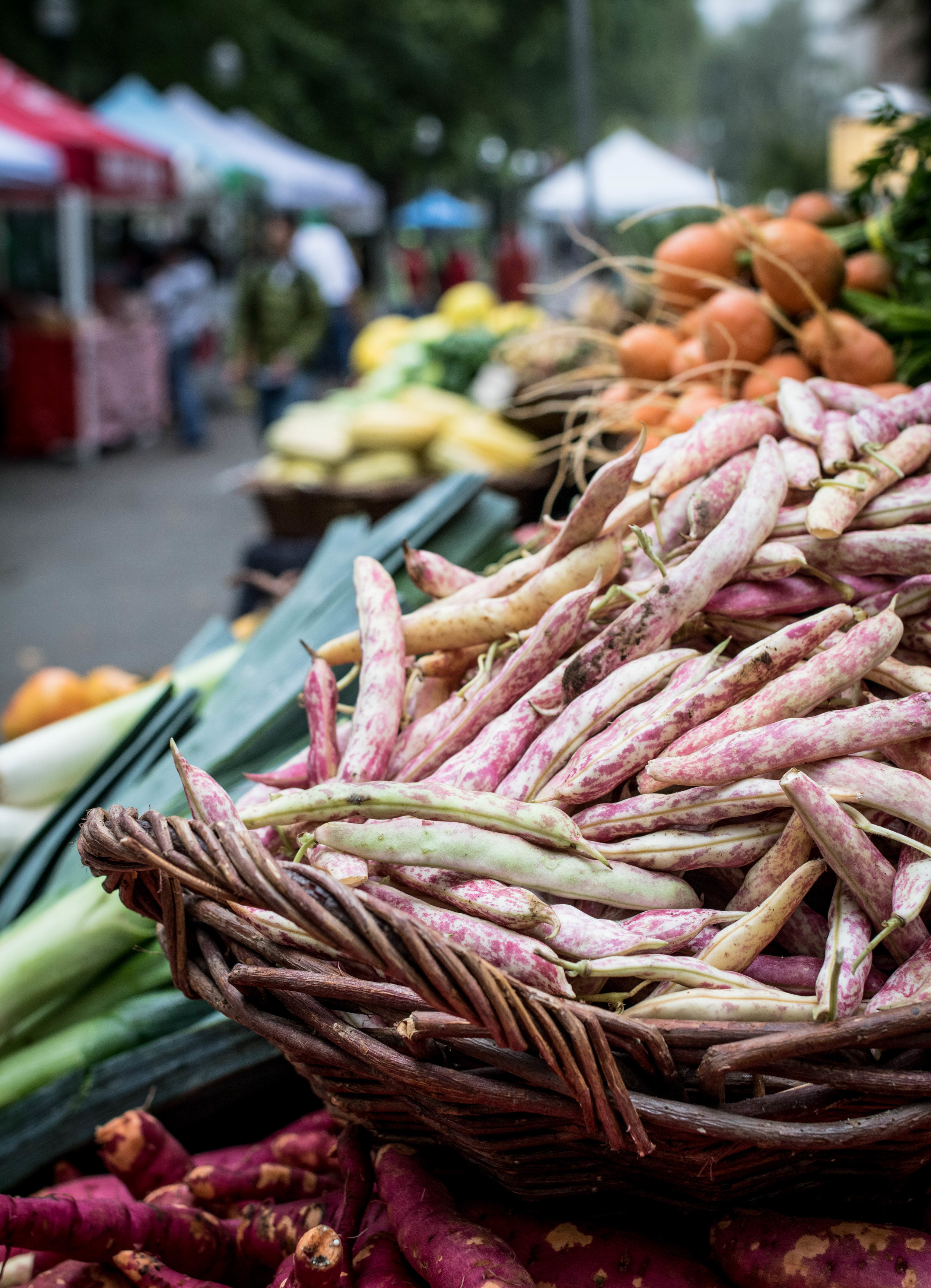 Groundwork Organic Beans.jpg