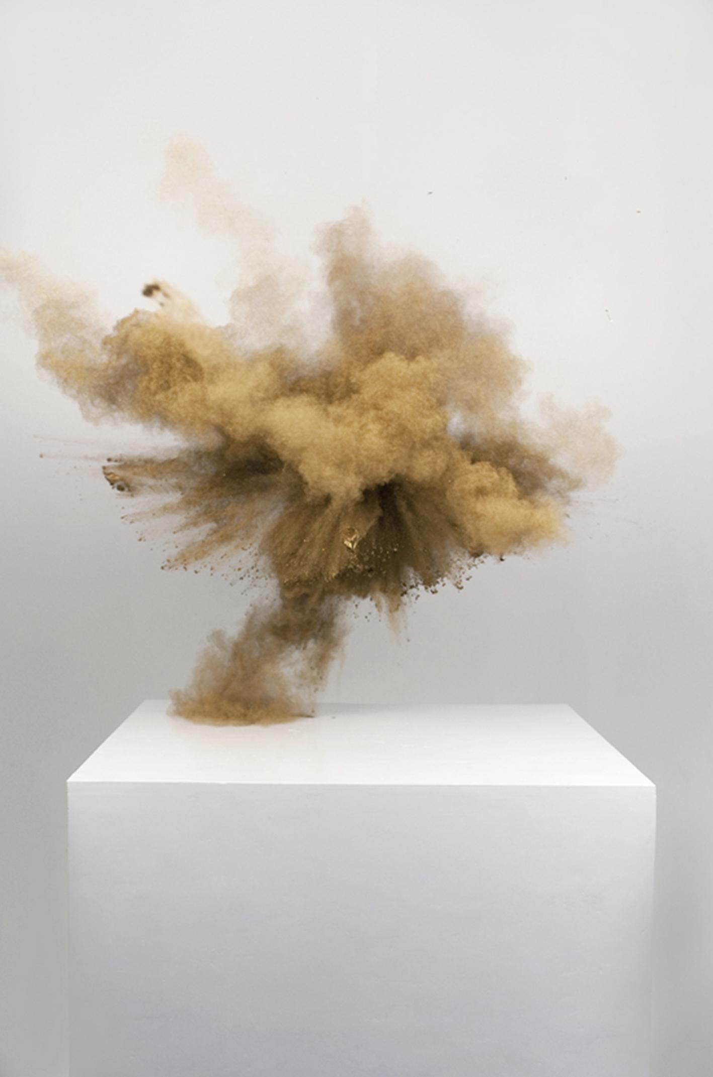 Bronze, Lamda Print, 2012
