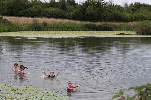 #wildswimming #summerday #bowerhillfarm #childhood