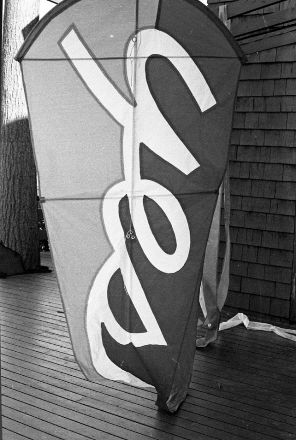 kites010.jpeg