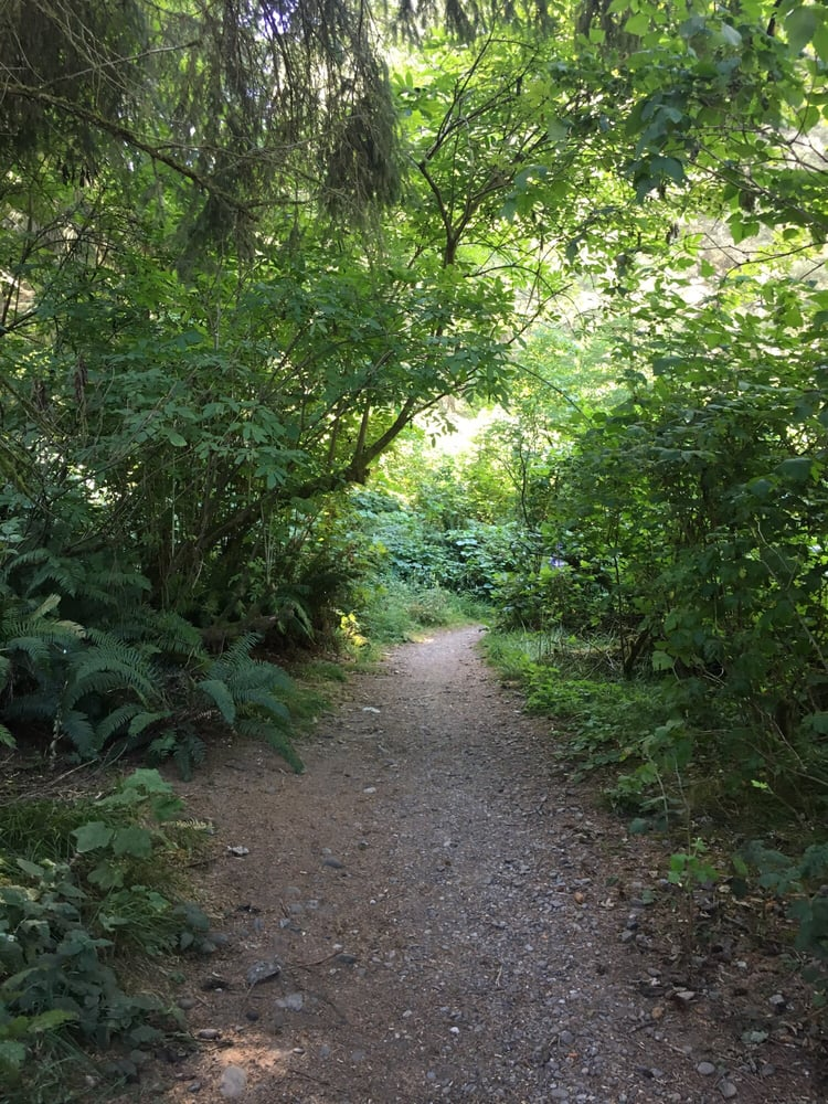 Hiking Path in Russ Park | Ferndale CA