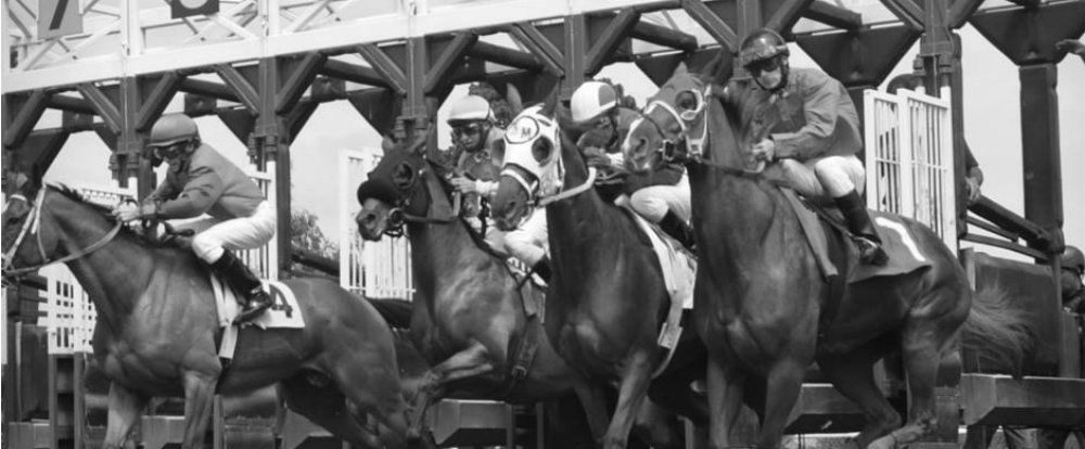 Horse Racing at Historic Humboldt County Fair in Ferndale, CA