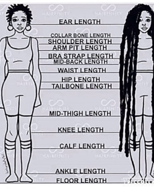 Determine Your Length