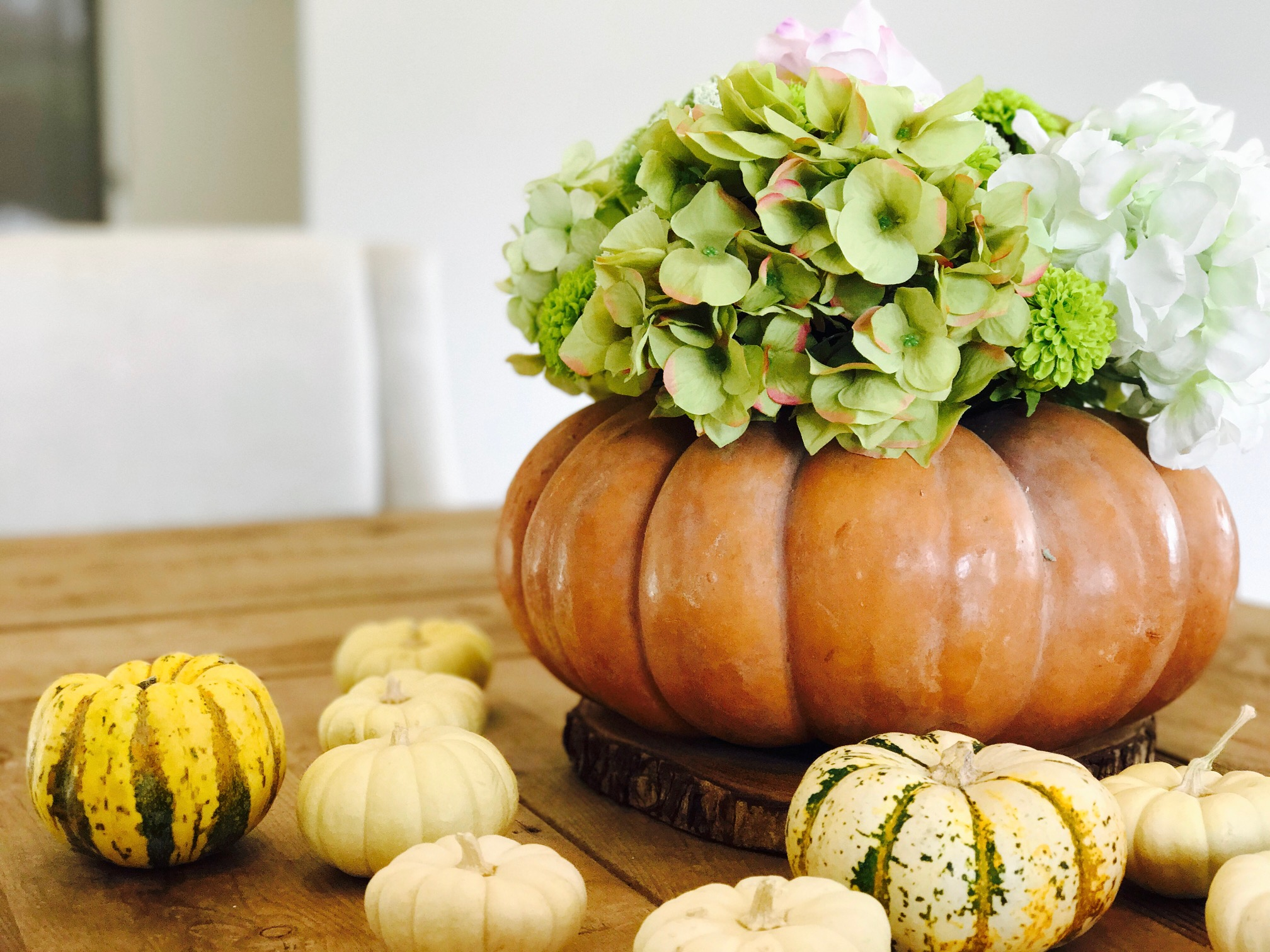 The transformation is remarkable!  You can you use smaller pumpkins too -- but the larger pumpkin planters really make for a gorgeous centerpiece.