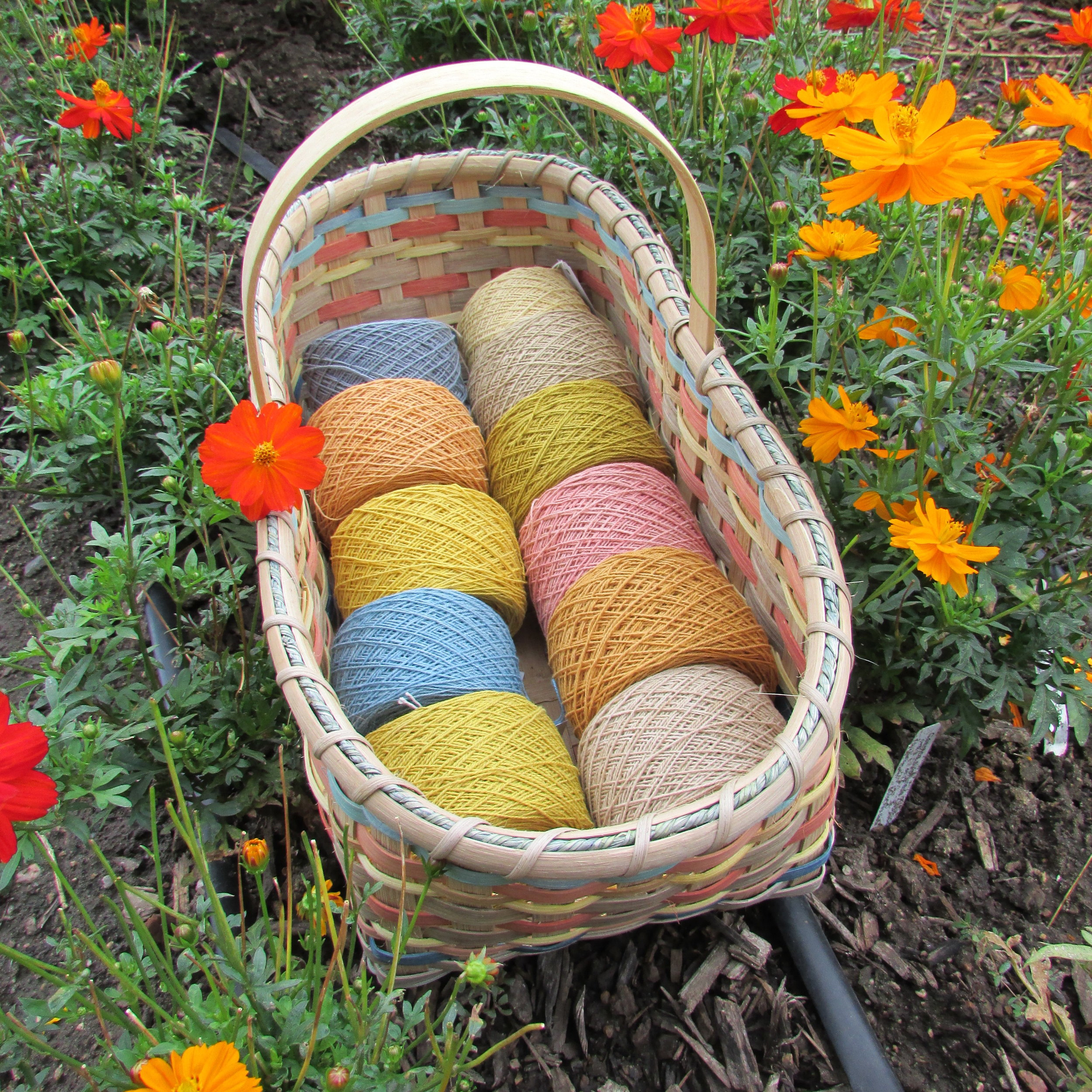 garden colors on cotton.JPG