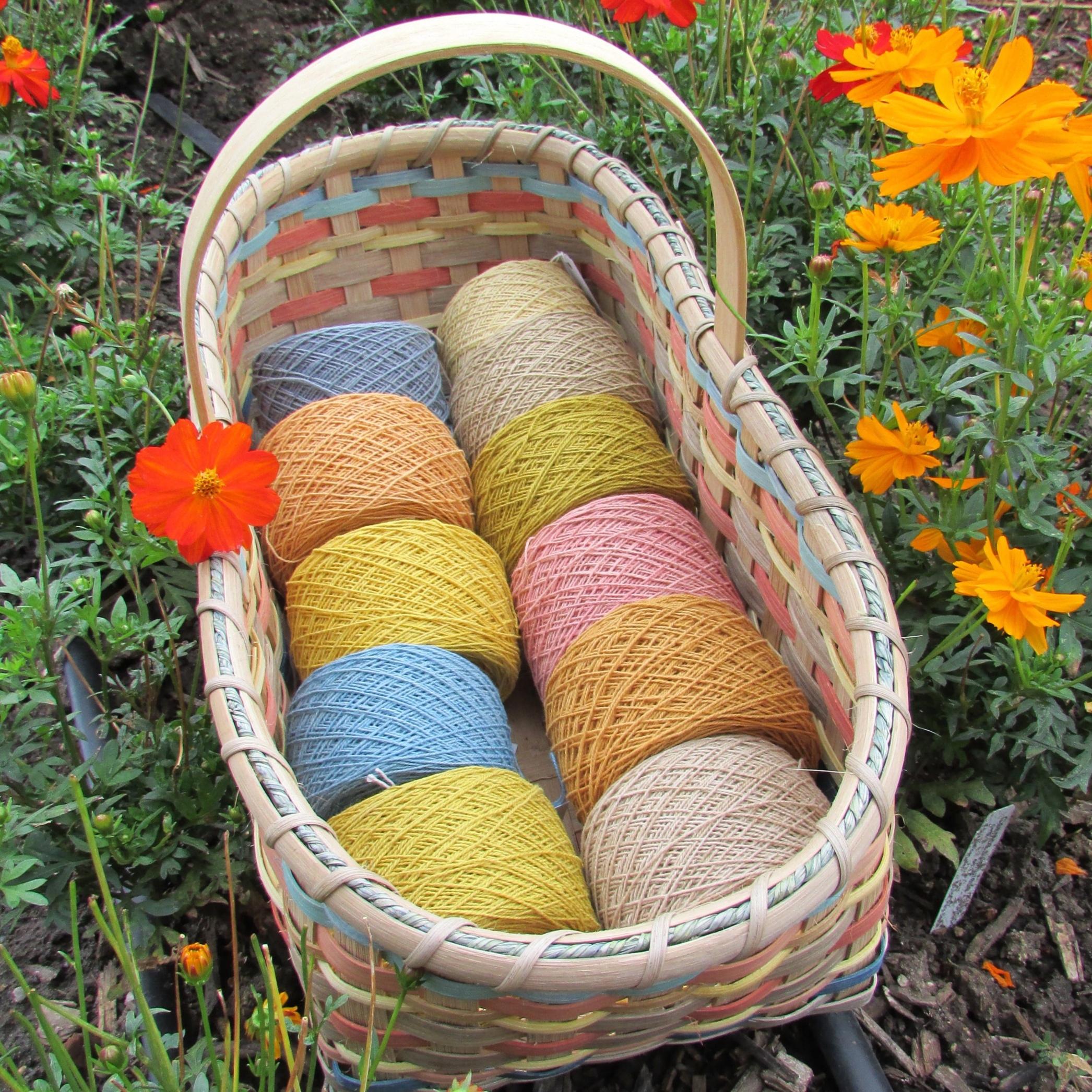 Janice Ford Memorial Dye Garden - Littleton, CO
