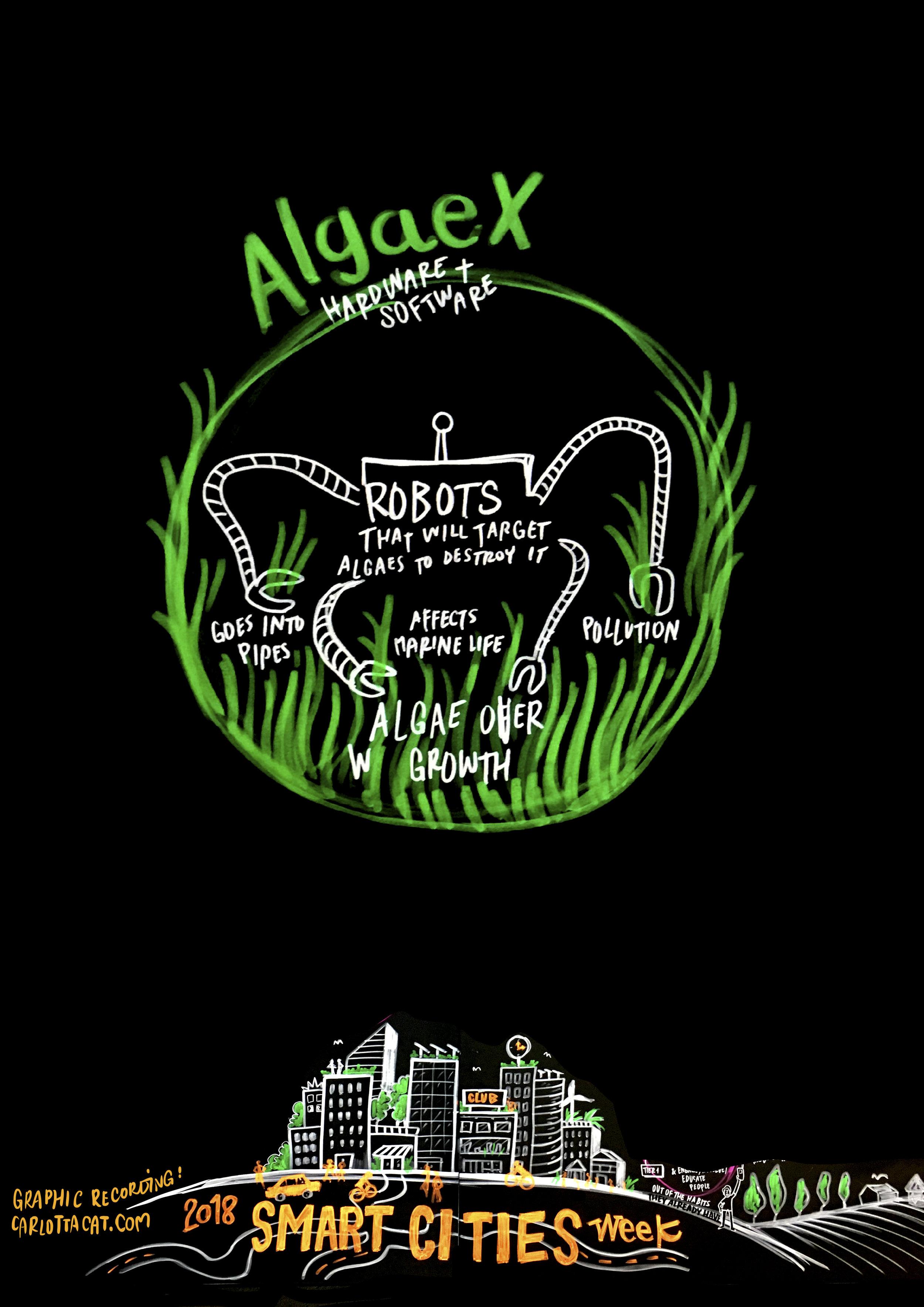 10 AlgaeX.jpg