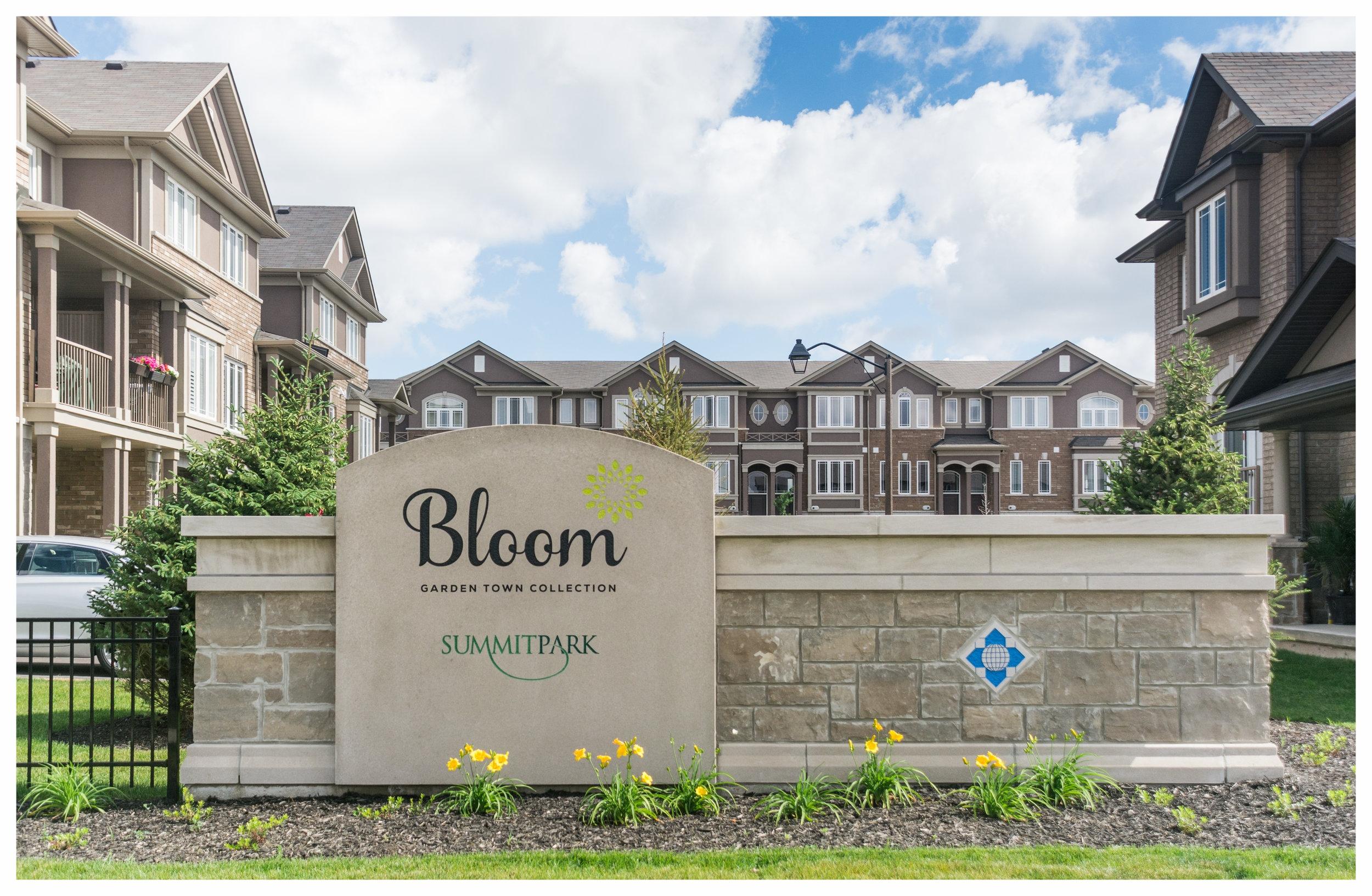Bloom-3.jpg