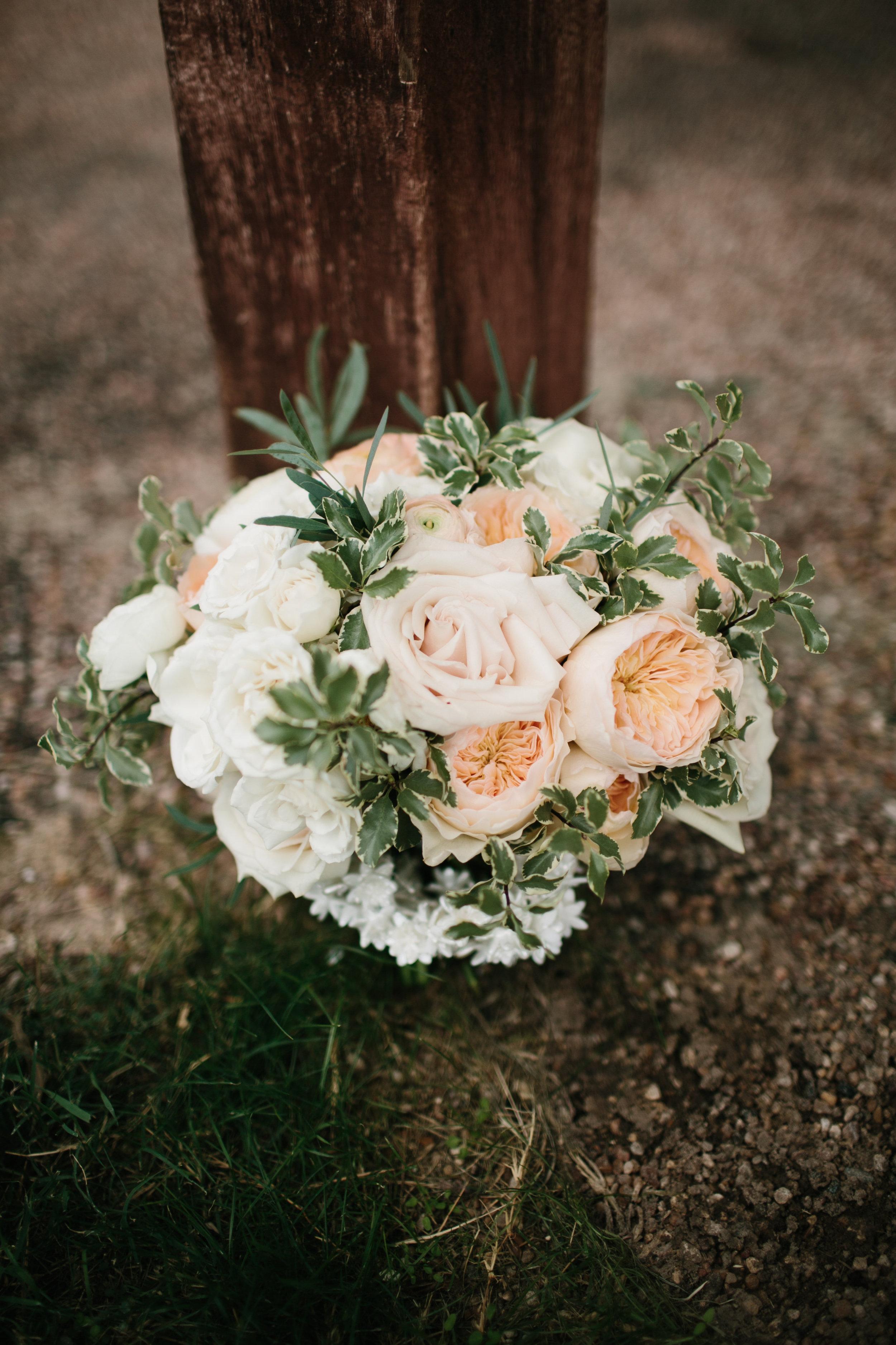 shannon_rose_rent_my_dust_fall_wedding_ (1).jpg
