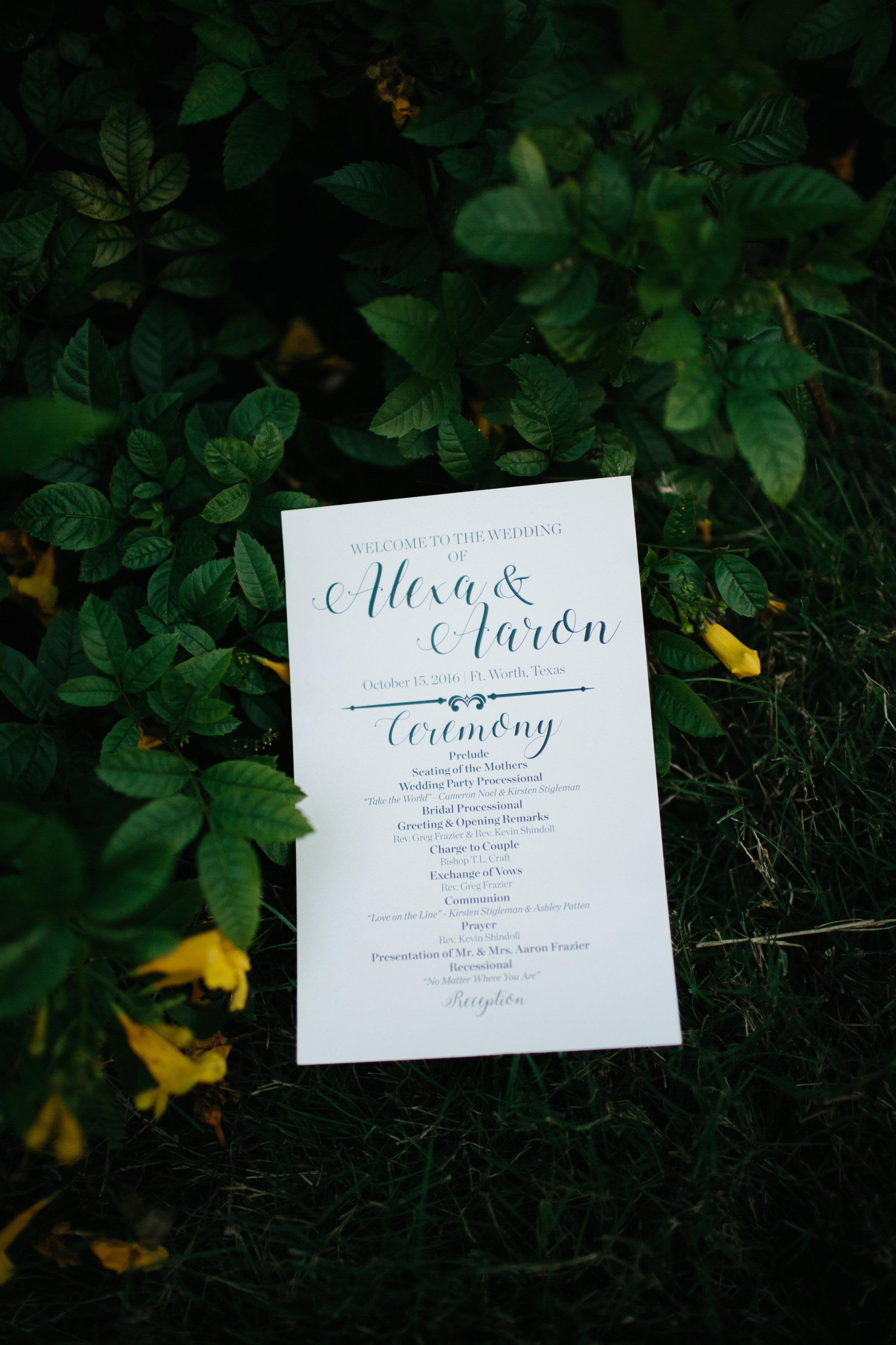 shannon_rose_rent_my_dust_fall_wedding_ (11).jpg
