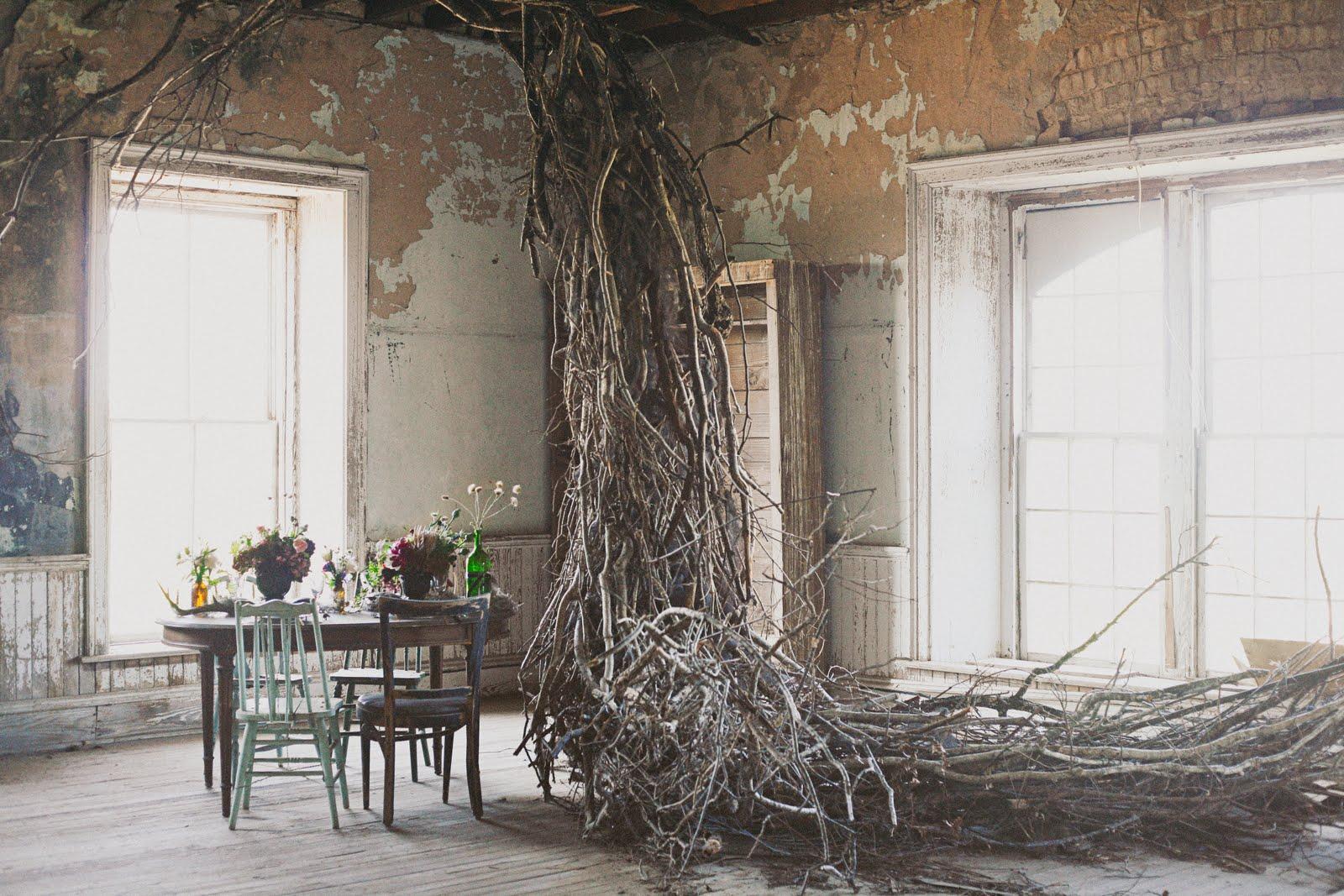 botanical_noir shoot_apryl ann_rent my dust_vintage rental (4).jpg