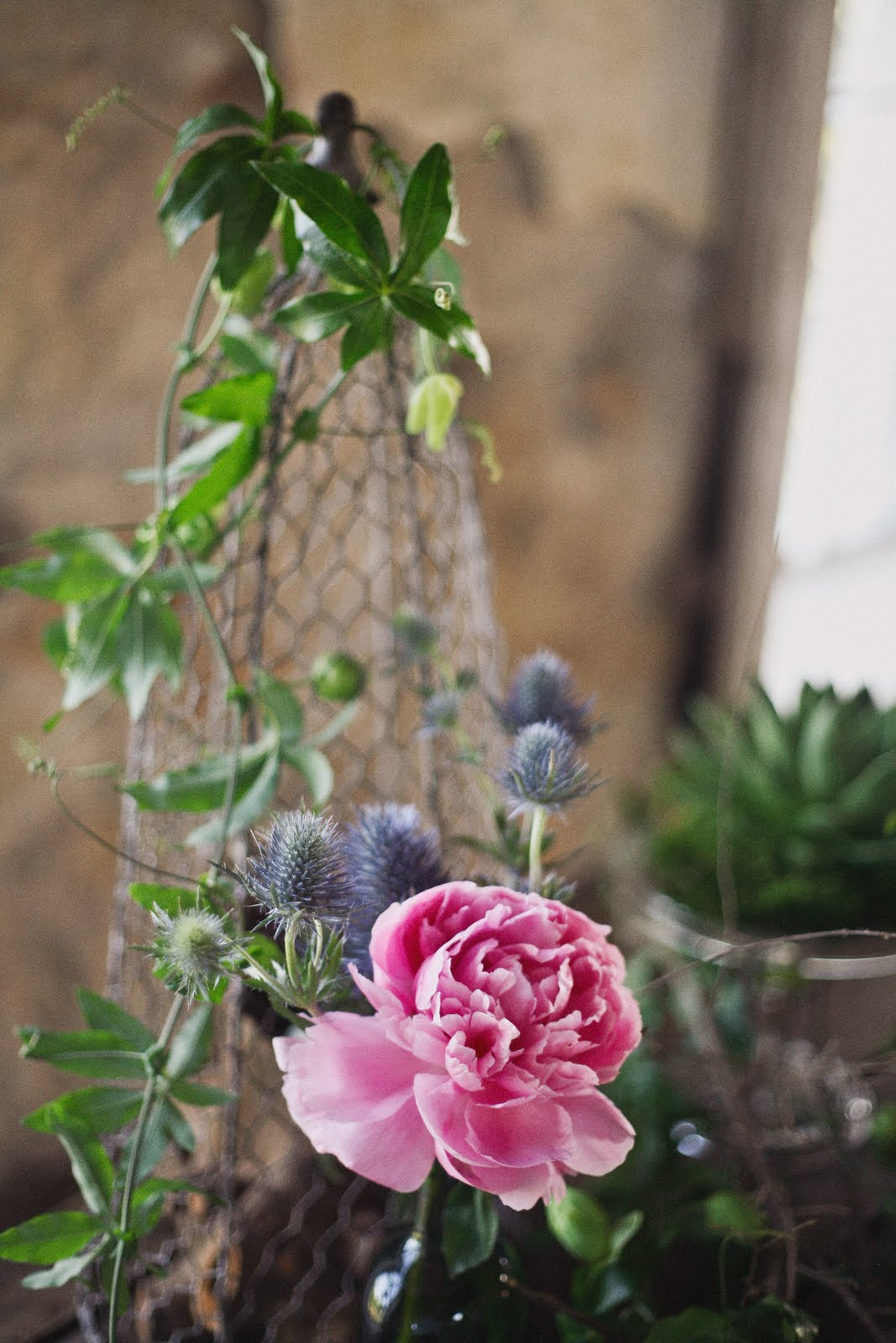 botanical_noir shoot_apryl ann_rent my dust_vintage rental (10).jpg