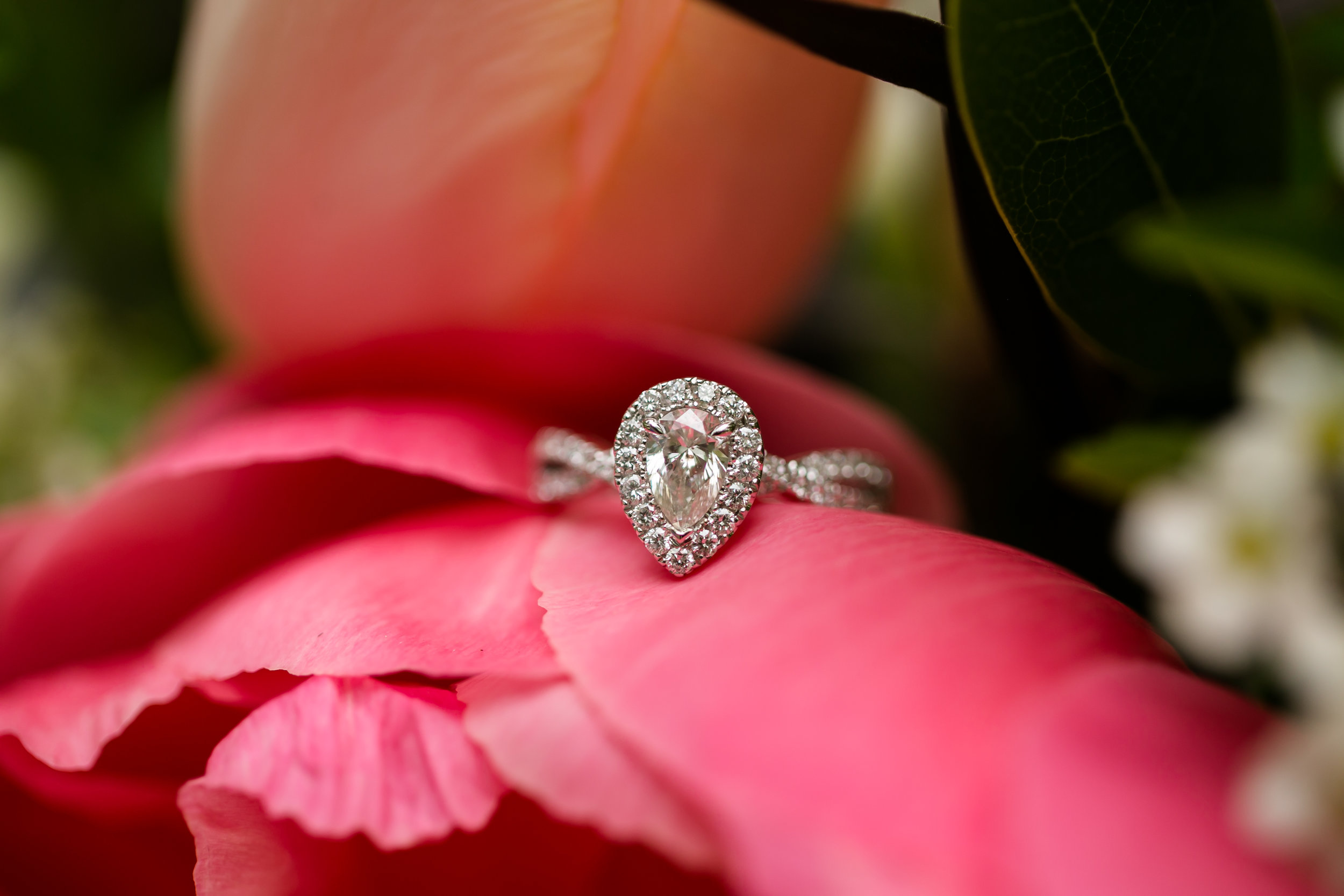 Engagement Proposal Rent My Dust vintage rentals  (133).jpg