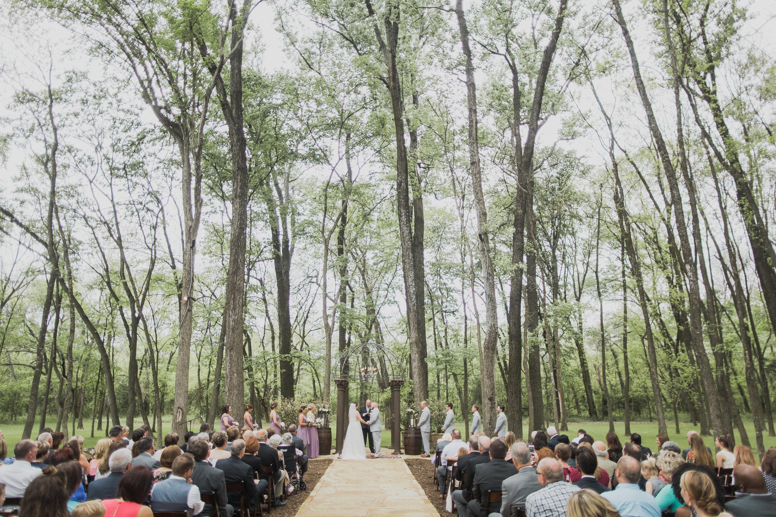nbarrett_rent my dust_wilson wedding (12).jpg