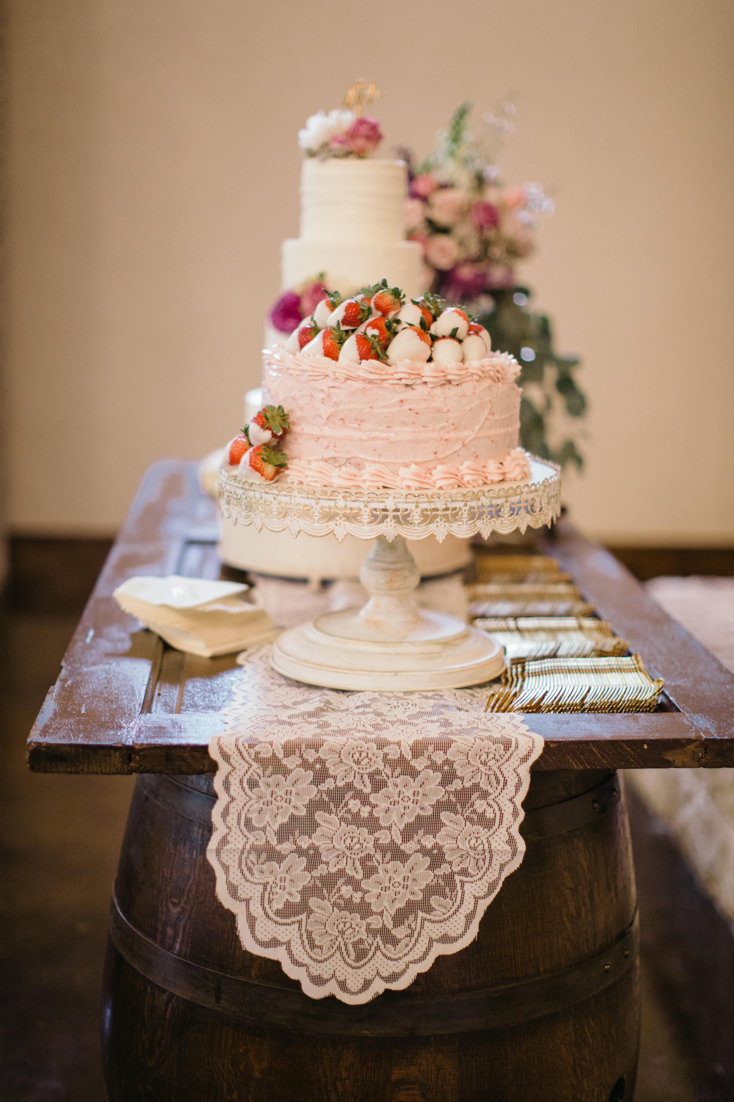 nbarrett_rent my dust_wilson wedding (17).jpg