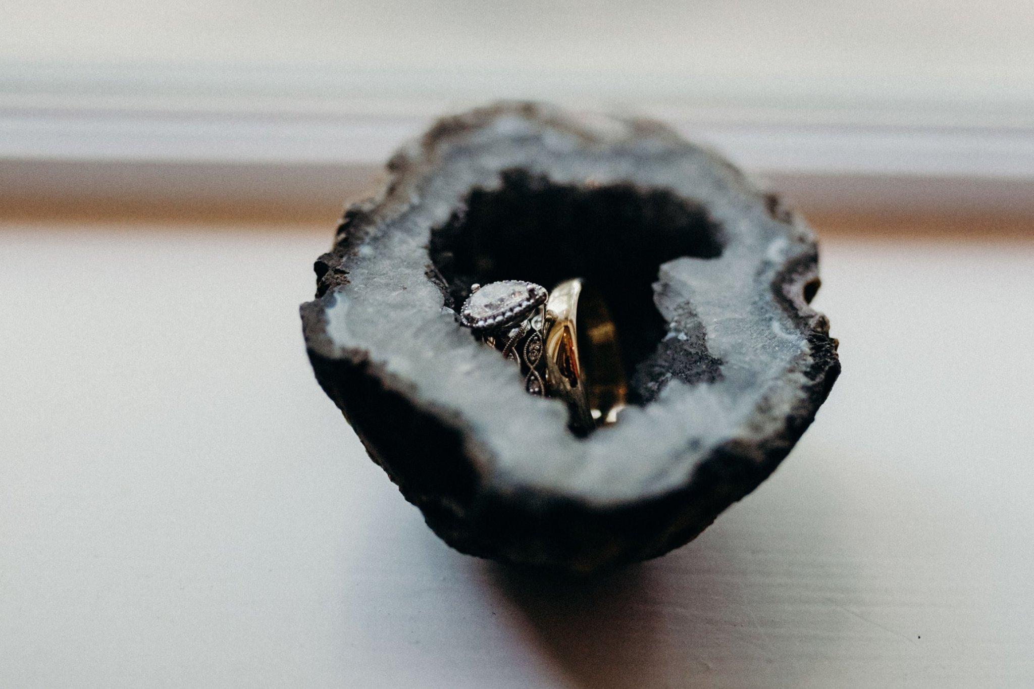 moth moonlite_rent my dust_jaime marcus (1).jpg