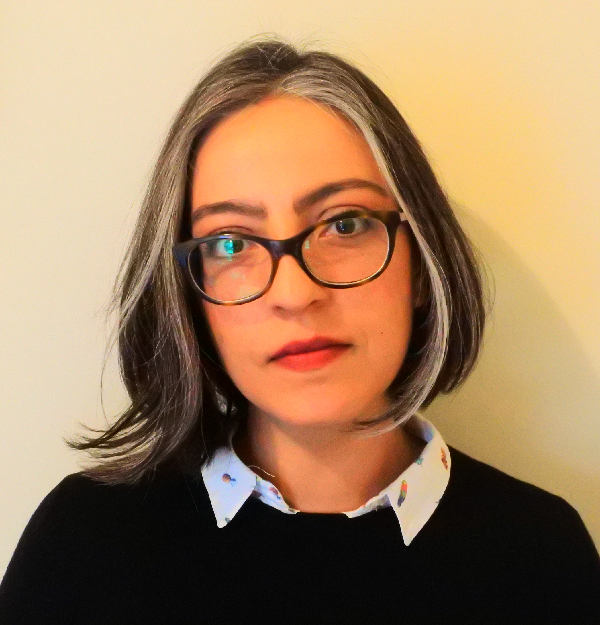 Emine Hande Tuna is a Postdoctoral Research Fellow at Brown University. Her research project on historical and contemporary approaches to imaginative resistance is funded by Social Sciences and Humanities Research Council of Canada.
